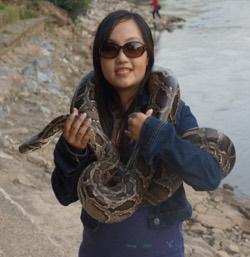 Photo: Boa with snake