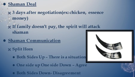 Shaman deal: 3 days negotiation (chicken, essence, money). If family doesn't pay, the spirit will attack the shaman. Shaman communication: Split horn. Both sides up means there is a situation. One up one down means agreement. Both sides down means disagreement.