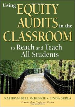 equity audits book