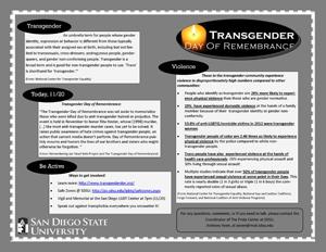 trans_day_rem_2013.jpg