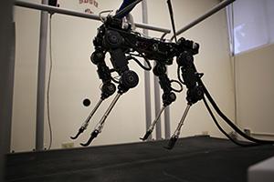 Photo of 4-legged walking robot