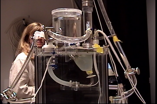 Cardiac simulator developed at SDSU