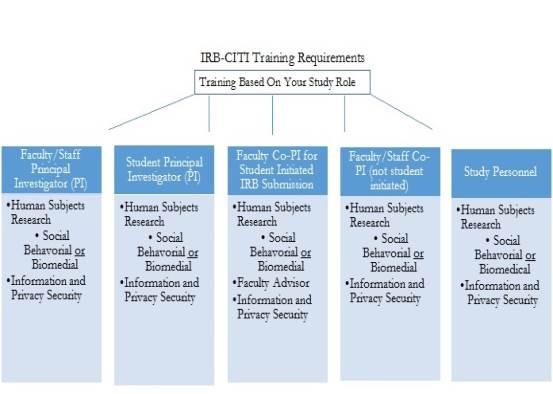 citi_training_visual_diagram