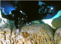 An underwater cave in Mexico could hold the oldest human remains in the Americas.