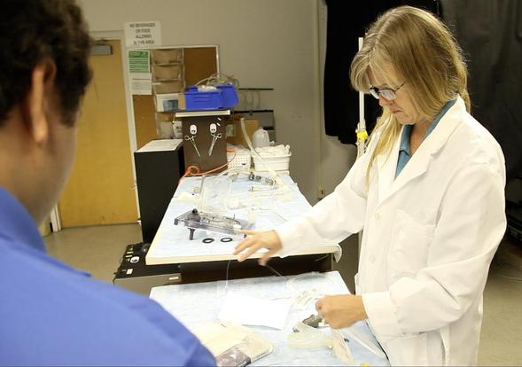 Karen May-Newman, professor of mechanical engineering, founded SDSU's bioengineering program in 1998.