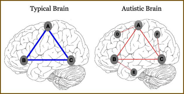 نمایش الگوهای اتصالات غیر معمول مشاهده شده توسط fcMRI