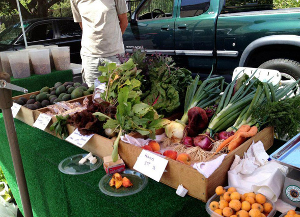 The Fresh Fund program made it possible to purchase fruits and vegetables at local farmers markets.