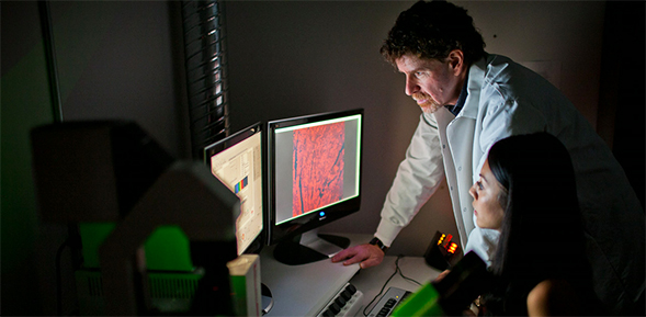 Mark Sussman received a Program Project Grant from the National Institutes of Health to further his studies of cardiac stem cells.