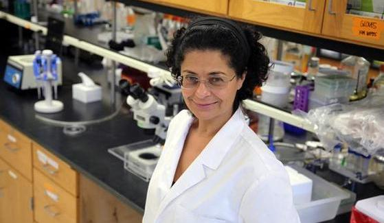 Manal Swairjo is trying to figure out the inner workings of transfer RNA.
