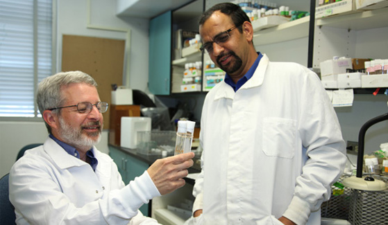 SDSU biologists Sanford Bernstein (left) and Girish Melkani