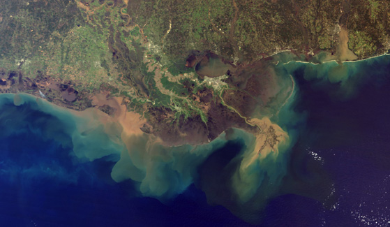 Mississippi River Delta (Credit: NASA)