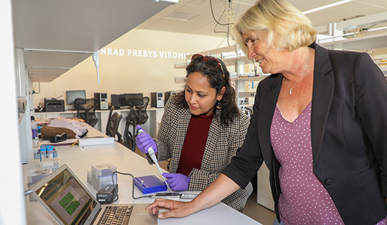 Conservation geneticist Shaili Johri (left) and marine microbial ecologist Elizabeth Dinsdale sequenced the genome of the silky shark.