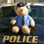 teddy bear on cruiser