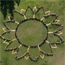 "Students create a human sunflower and spell out ""joie de vivre"" in honor of Chelsea King"