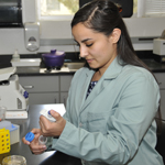 Ellese Carmona at work in the lab