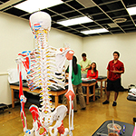 skeleton in the class