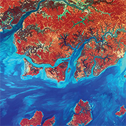A Landsat photo of the coastline of the West African nation Guinea-Bissau.