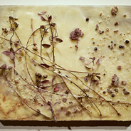 Jennifer Anne Bennett, Branch and Brine, 2016; encaustic and mixed-media on panel, 11 x 14 inches; courtesy of the artist