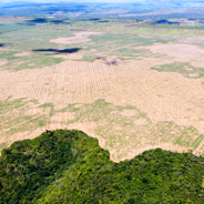 Desforestation in the Amazonian state of Maranhão