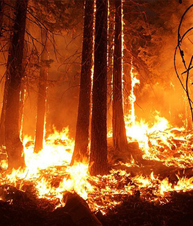 Evacuations from emergencies, like wildfires, depend on accurate population data.
