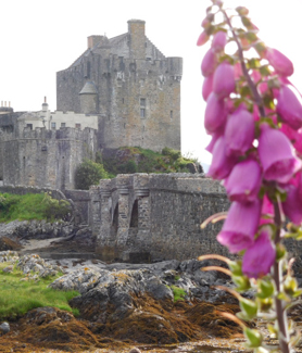 Eilean Donan Castle (Photo: Matthew Tornero)