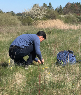 Biologist Nick Barber spent the sping and summer in Germany, studying the proliferation of predatory beetles in grasslands.
