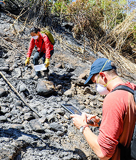 SDSU students and researchers participate in wildfire, water and flora research at Alvarado Creek.
