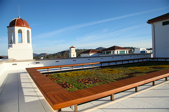 The green roof atop the Conrad Prebys Aztec Student Union reduces heat and promotes a natural habitat.