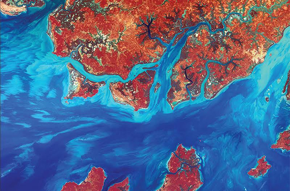 A Landsat photo of the coastline of the West African nation Guinea-Bissau. Photo credit: U.S. Geological Survey