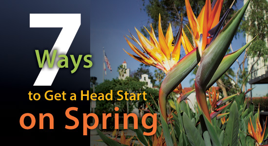7 ways to get a head start on spring