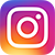 instagram logo: white camera on colored circle