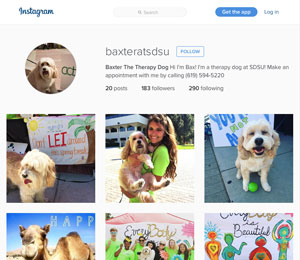 screen shot of the Baxter's instagram page