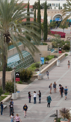 Photo: Students on campus walkway