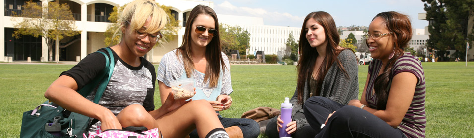 students having lunch on the lawn