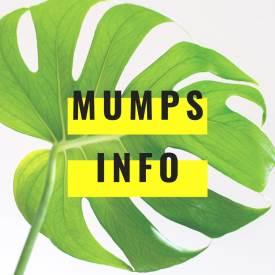 mumps-spring