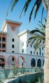 Photo: campus building and palm tree