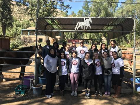 photo: AUP students at Magic Horse riding center
